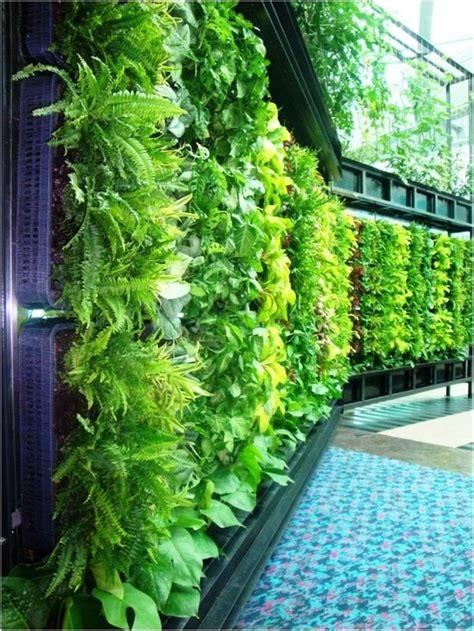 Canastas para colgar plantas.   Jardines verticales ...