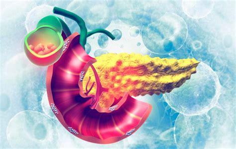 Cáncer de páncreas Causas, síntomas y tratamiento