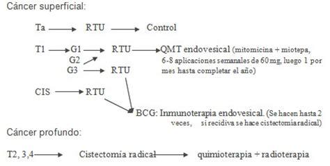 Cancer de vejiga   Revista Electrónica de PortalesMedicos.com