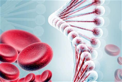Cáncer en la sangre | Salud | La Revista | EL UNIVERSO