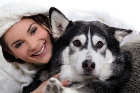 Canine Lymphoma Life Expectancy   CanineLymphoma.com