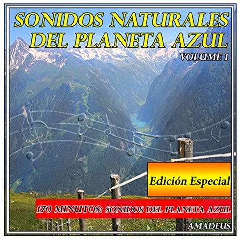 Canto de los Pájaros al Amanecer: Sonidos de la Naturaleza ...