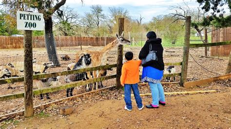 Capital Of Texas Zoo Has The Best Exotic Animals Near Austin
