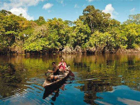 Características de la selva baja | Escolar | Series ...