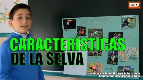 Características de la SELVA | CIENCIAS NATURALES   PRESEN ...