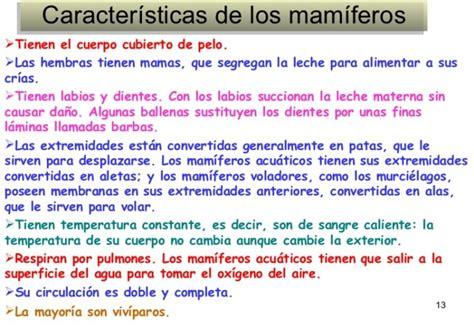 Características, diferencias y similitudes de mamíferos y ...