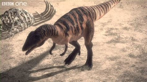 Carcharodontosaurus   Planet Dinosaur   Episode 1   BBC ...