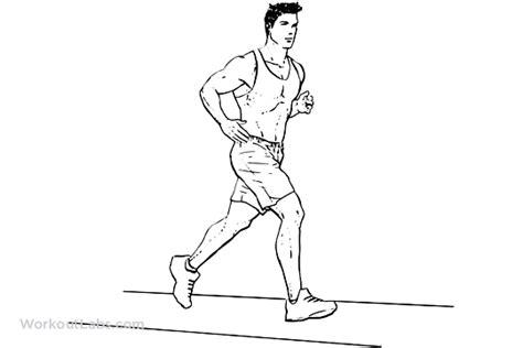 Cardio – Running / Jogging / Treadmill   WorkoutLabs