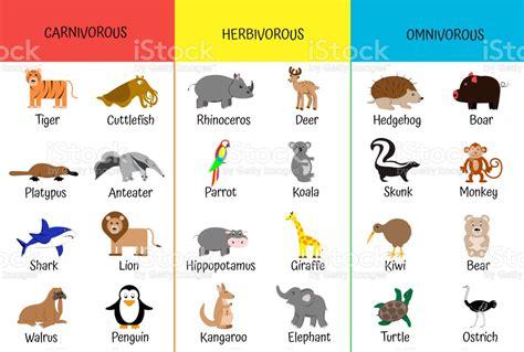 Carnivores Herbivores Omnivores Animals By Category ...