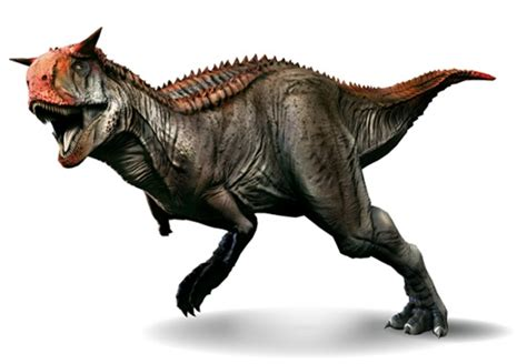 Carnotaurus | Toda la información de este dinosaurio carnívoro