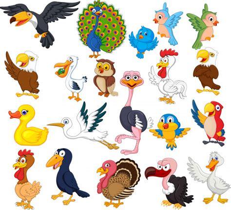 Cartoon bird collection set Vector | Premium Download