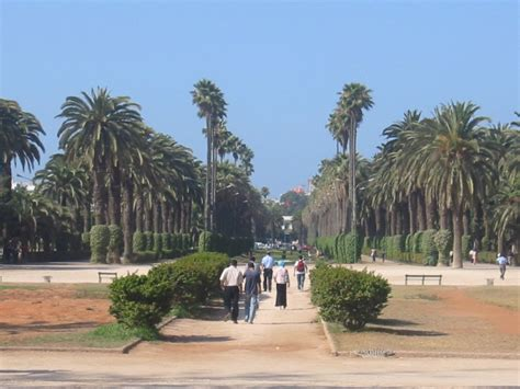 Casablanca: ¿Qué ver y hacer en la preciosa ciudad de la luz?