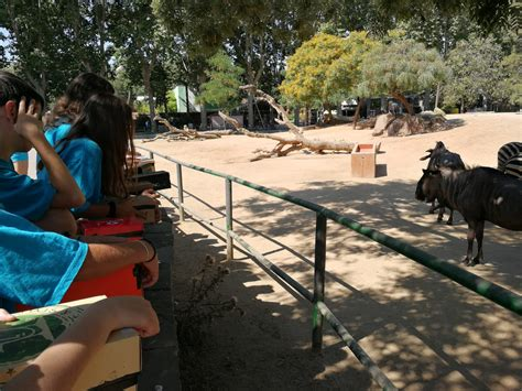Casal de Fotografia | Zoo Barcelona