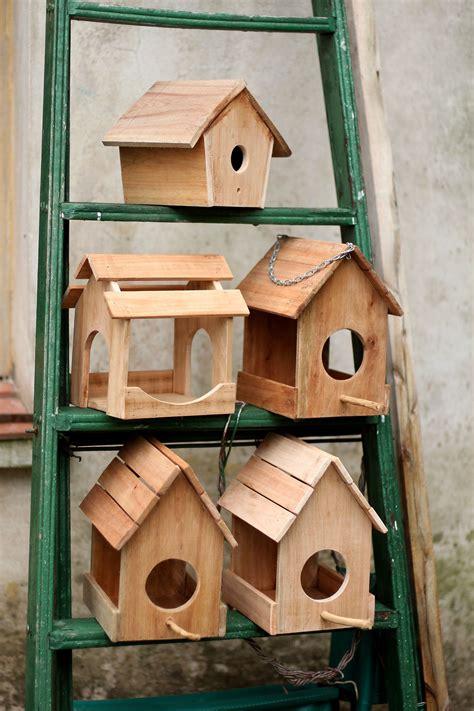 Casas para pájaros en construcción Bird Houses under ...