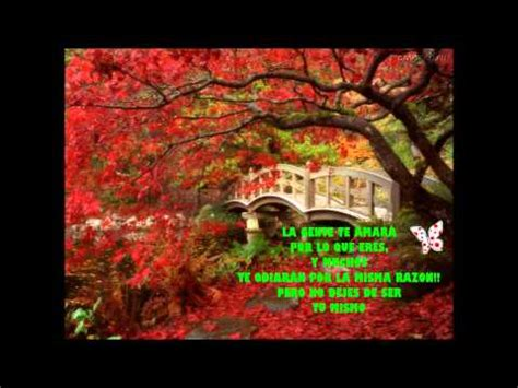 cascadas y paisajes con frases reflexivas.   YouTube