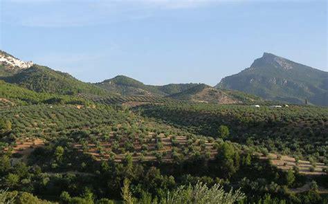 Castilla La Mancha, segunda región en agricultura ...