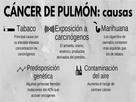 Causas Cancer De Pulmon   SEONegativo.com
