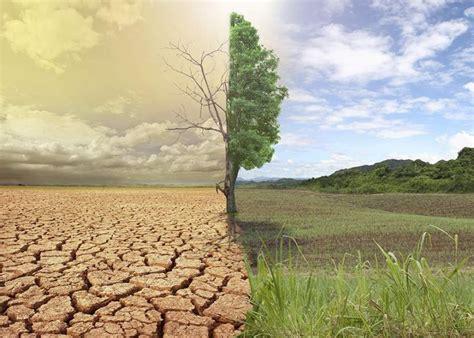 Causas y efectos del cambio climático global   Grupo IOE