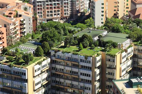CDMX necesita 1,200 hectáreas de azoteas verdes   TecReview