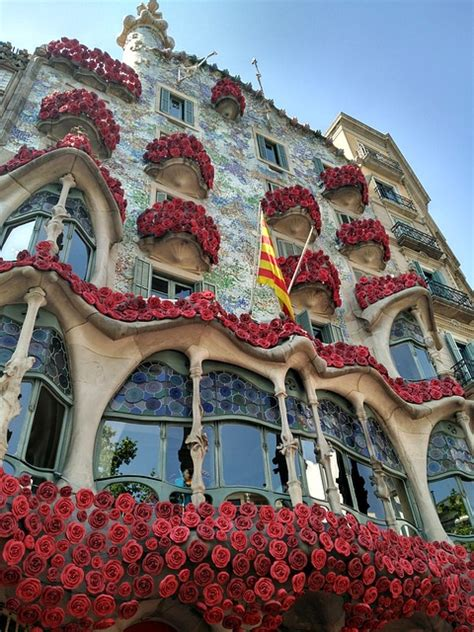Celebra Sant Jordi   La fiesta del libro y la rosa en Cataluña