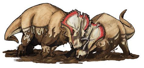 Centrosaurus apertus   Wikipedia, la enciclopedia libre