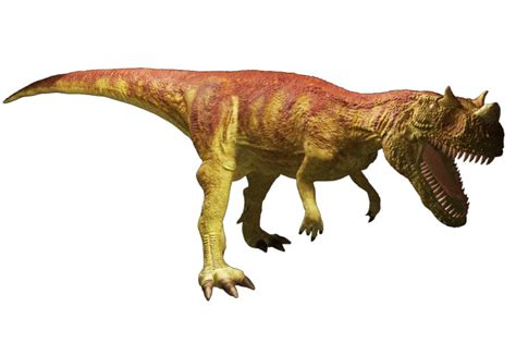Ceratosaurus Facts | Dinosaurs Pictures and Facts