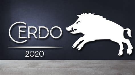 Cerdo   Horóscopo Chino 2020   Suerte Lotería