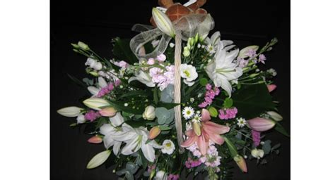 Cestas de Plantas   Allium Floristas