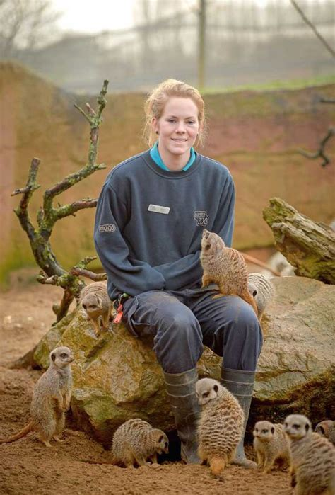 Channel 4 documentary reveals The Secret Life Of The Zoo ...