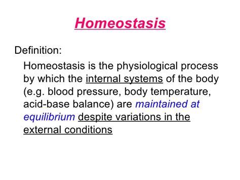 Chapter 12 Homeostasis Lesson 1   The Need for Homeostasis