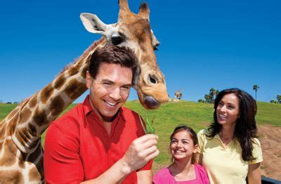 Charity Auction Family Vacation Packages | Seaworld san ...
