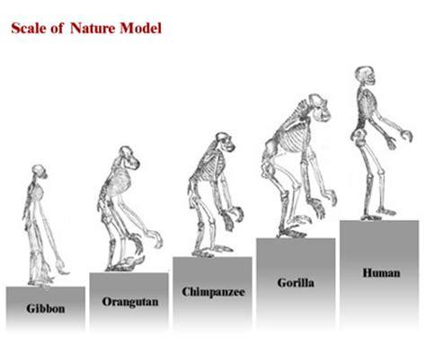 Charles Darwin III | Biology | Visionlearning