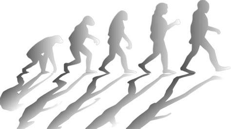 Charles Darwin y la teoría de la evolución