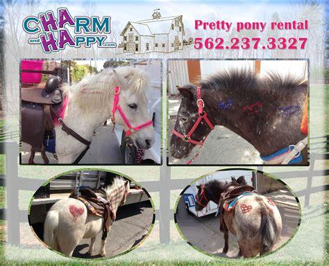 CharmandHappy.com pony ride ponies petting zoo farm ...