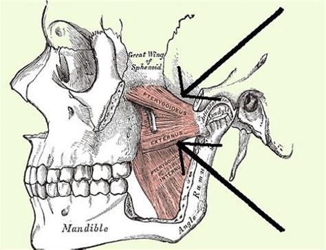 ¿Chasquido en tu mandíbula? | ConGlamour