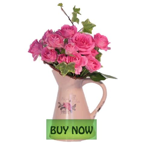 cheap flowers free delivery   DriverLayer Search Engine