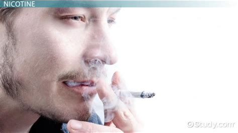 Chemicals in Smoking Tobacco: Carbon Monoxide, Tar ...