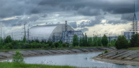 Chernobyl has become a refuge for wildlife 33 years after ...