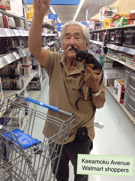 Chihuahua, Walmart shopper   Amiable Dog Training   Amy ...