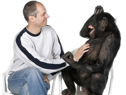 Chimps are Humans Too – Vox Cheapoli