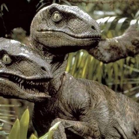 CIENCIA   Parque Jurásico se equivocó: los ráptores cazan ...