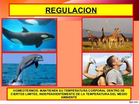 CLASE HOMEOSTASIS Y RESPUESTAS DE ADAPTACION