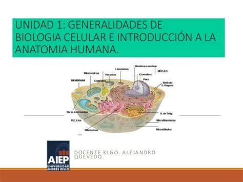 Clase1: Biología celular
