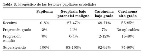 Clasificación de la OMS 2004 para los tumores vesicales ...