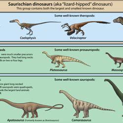 Clasificacion Dinosaurios   SEONegativo.com