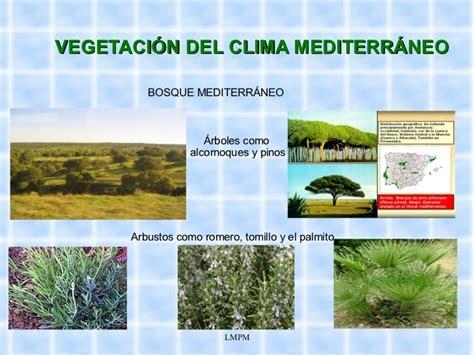 Clima de España2