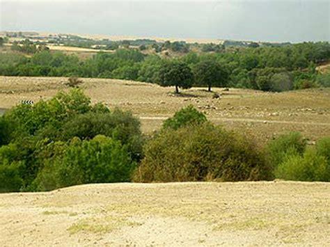 Clima mediterráneo | Wiki | Everipedia