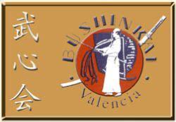 Club Bushinkai: Kendo en Valencia   DolceCity.com