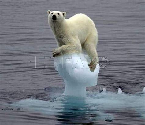 Colaboración | Consecuencias del cambio climático