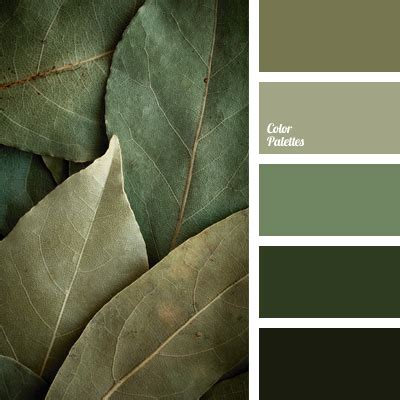 cold shades of green | Color Palette Ideas